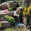 Jak założyć ogródek skalny?