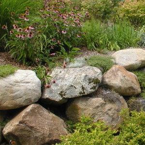 Jakie kamienie należy wybrać?