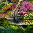Bezpłatne programy do projektowania ogrodów