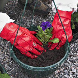 Przygotowujemy podłoże dla roślin
