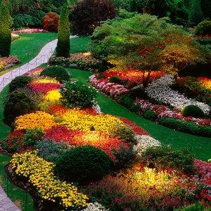 Gdzie jest miejsce dla kwiatów w naszym ogrodzie?