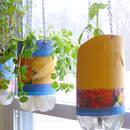 Jak wykonać samopodlewającą doniczkę domowym sposobem?