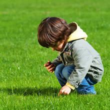Jak zająć się trawnikiem na wiosnę?