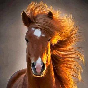 Koń kasztanowaty