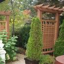 Jak zbudować w ogrodzie trejaż?