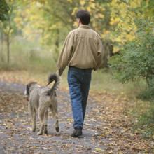 Psia higiena na spacerach – podstawowe zasady