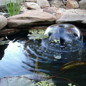 Co należy wiedzieć o pielęgnacji oczka wodnego?