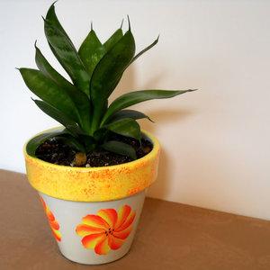 Nawożenie roślin