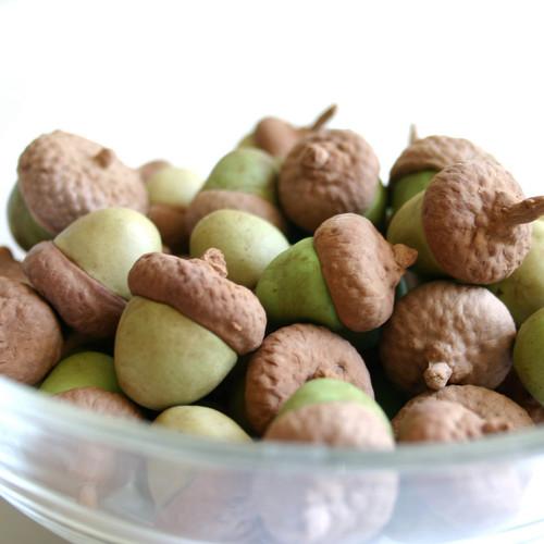 Jak przygotować grzybki z żołędzi?