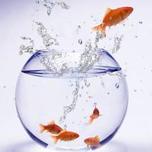 Wymiana wody w akwarium krok po kroku