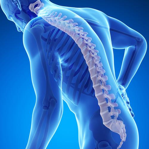 Jak nie dopuścić do osteoporozy?