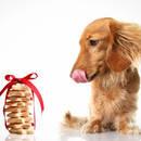 Czy przekąski dla psów są zdrowe?