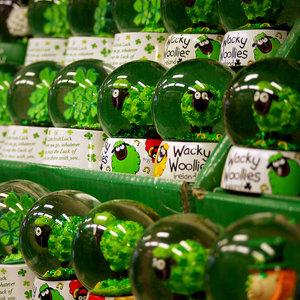 Zielona koniczyna na szczęście