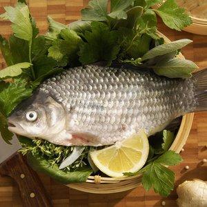 Jak dobrze przechowywać ryby?