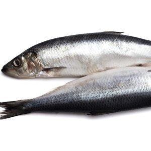 Opakowanie ryb