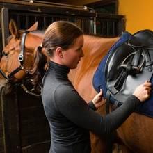 Siodłanie konia – co trzeba o tym wiedzieć?