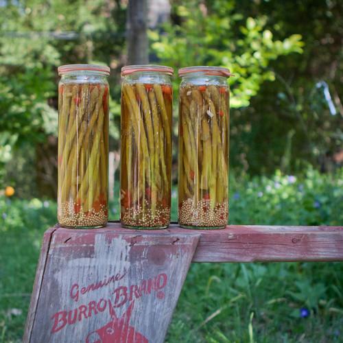 Jak dobrze przechowywać szparagi?