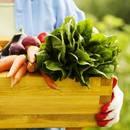 Po czym poznać żywność ekologiczną?