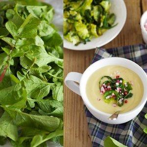 Doskonała zupa z liści rzodkiewki – jak ją przygotować?