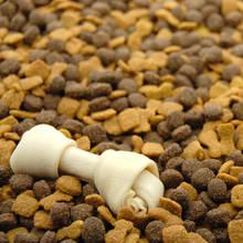 Jakich produktów nie może jadać pies?
