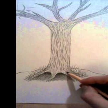 Rysowanie drzewa – krótki poradnik