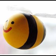 Jak zrobić ładną pszczółkę z wydmuszki?