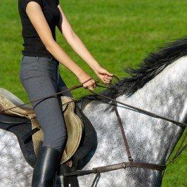 Rząd jeździecki