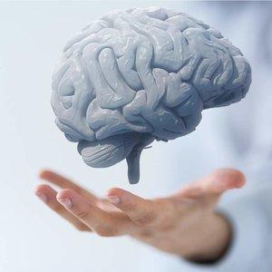 Prosty sposób zwiększenia możliwości intelektualnych