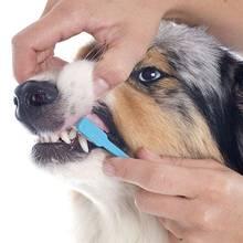 Jak przygotować dobrą pastę do zębów dla psa?