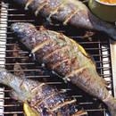 Jak przyrządzić doskonałą rybę z grilla?
