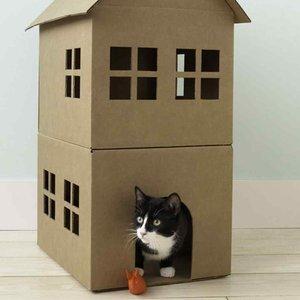Jak wykonać domek z kartonu dla kota?