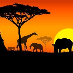 Jak samodzielnie udekorować kubek konturem Afryki?