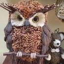 Oryginalny pomysł na zabawną sowę z szyszki