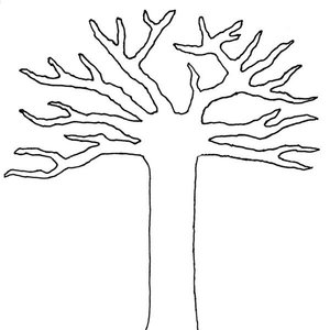 Obraz drzewa na ścianie – krok czwarty
