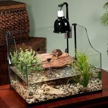 Przygotowanie akwarium dla żółwia wodno-lądowego – krok po kroku