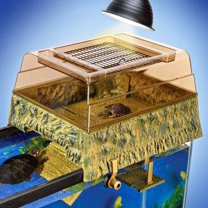 Akwarium dla żółwia wodno-lądowego – krok pierwszy